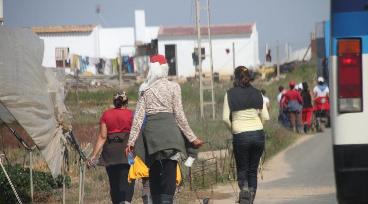 mujeres en lucha, feminismo, temporeras, fresas, huelva, trabajadoras marroquís, justicia, abuso
