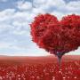 mujeresenlucha, amor romántico, san valentín